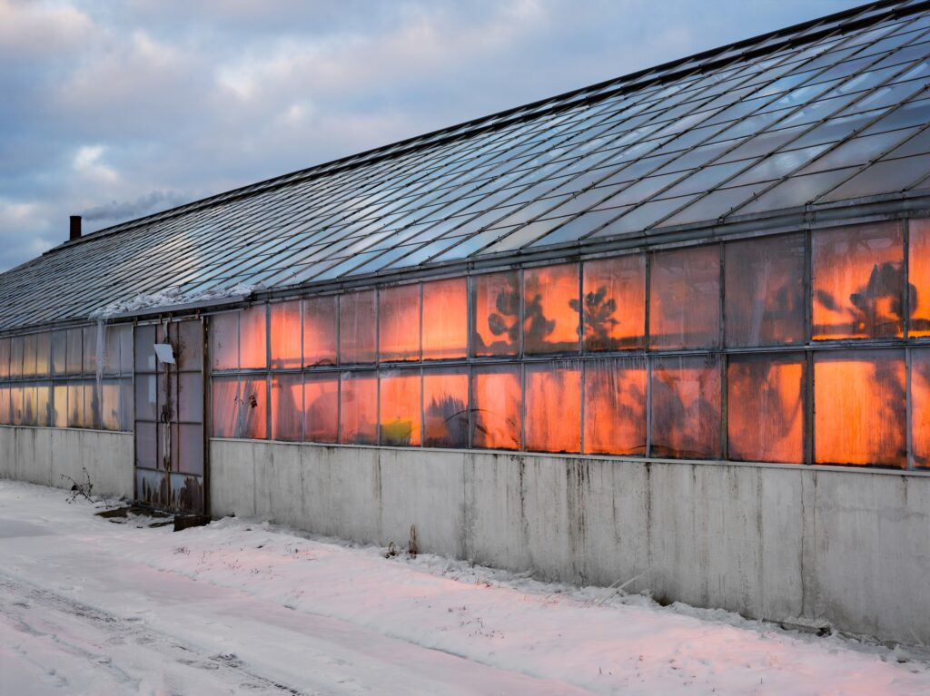 Photograph of a greenhouse with glass paneled walls and roof. An orange glow emanates from the inside.